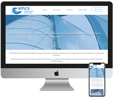 AMCS Performance Consulting