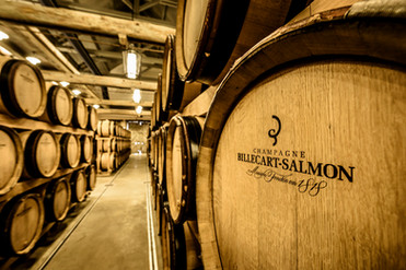 Maison Billecart-Salmon Wine Cellar