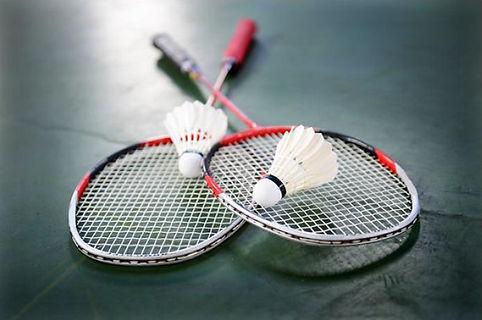 Chiddingfold Badminton Club
