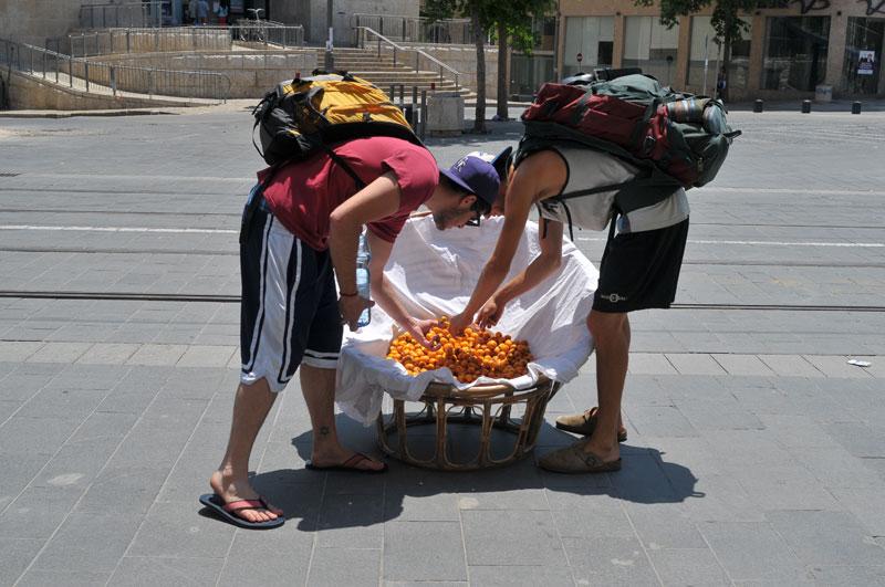 Loquat Basket