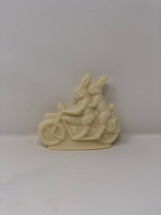 Solid bunny on motorcycle