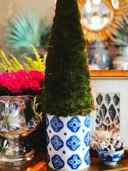 Moss tree in blue and white canister