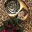 Thumbnail: Palm plate
