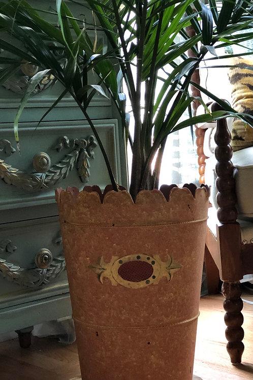 Scallop planter
