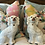 Thumbnail: Staffordshire dogs