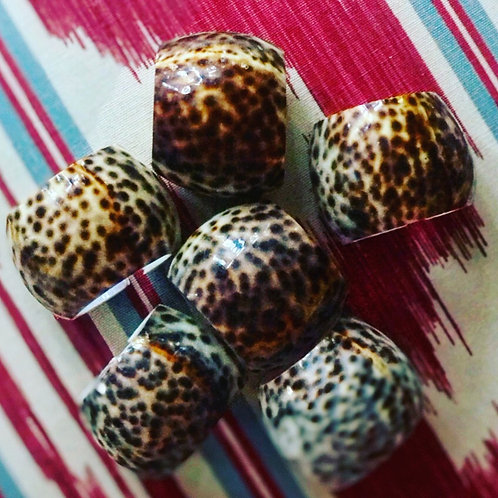 Cowrie napkin rings