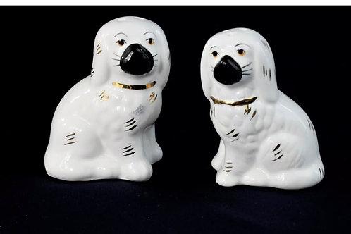 Pup salt and pepper