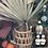 Thumbnail: Wicker covered pitcher