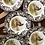 Thumbnail: Spode pheasant dinner plates