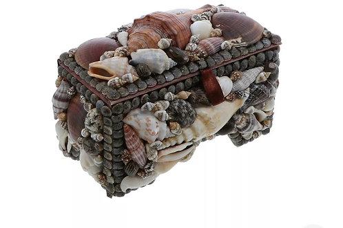 Seashell box