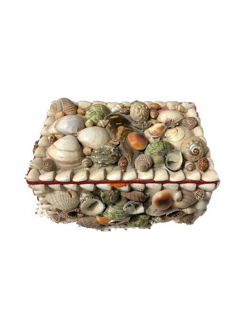 Vintage seashell box