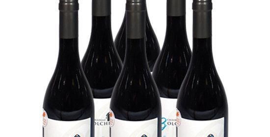 6 bouteilles Costière de Nîmes 2016 - Rouge - Heureux hasard