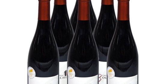 6 bouteilles Costière de Nîmes 2016 - Rouge - Belle rencontre