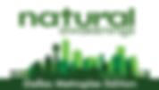 NA_Dallas_Logo_Website.png