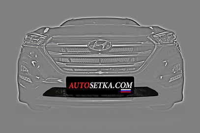 Защита радиатора Hyundai Tucson (2015-)