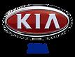 Защита радиатора на автомобили Kia