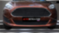 Защита радиатора Ford Fiesta (2015-)