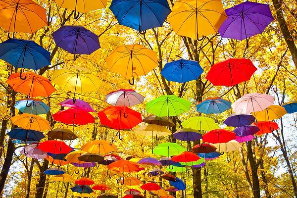 autumn umbrellas in the sky.jpg