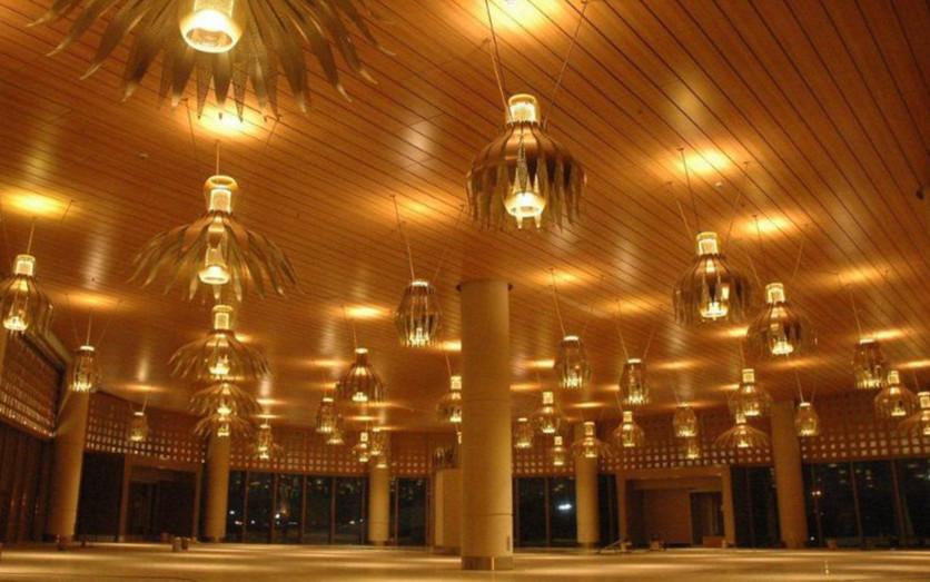 Hook on plank ceiling - Mumbai Internati