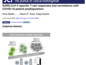 SARS-CoV-2 specific T-cell responses and correlations with COVID-19 patient predisposition