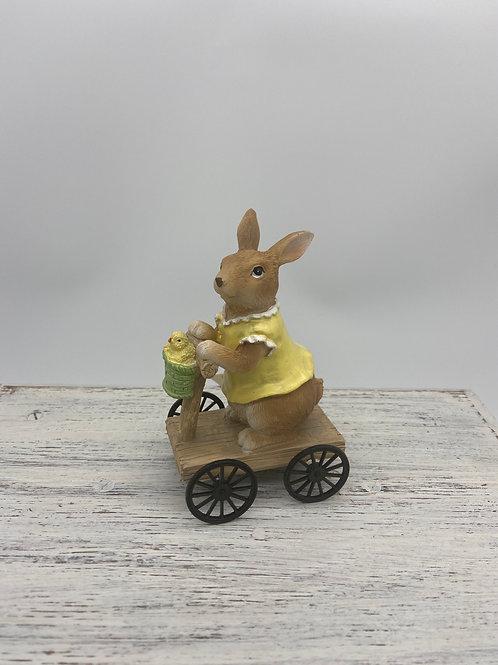Rabbit on Bike