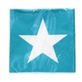 Napkin - Teal/White Star