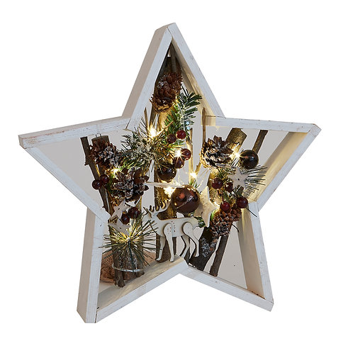 Led Star With Pinecones