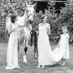 Horses and weddings!