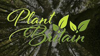 Plant Britain Campaign