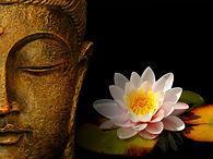 buddha-wallpapers-photos-pictures-h2o-li