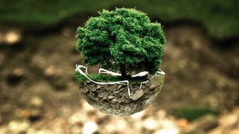 Nachhaltigkeit im Büro...