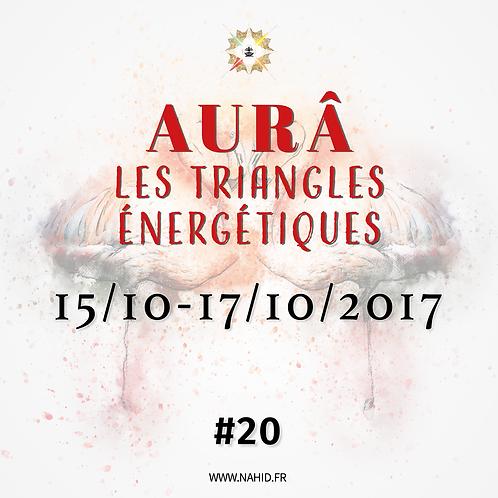 #20 Les Triangles Énergétiques du 15 au 17/10/2017 | Les Archives de l'