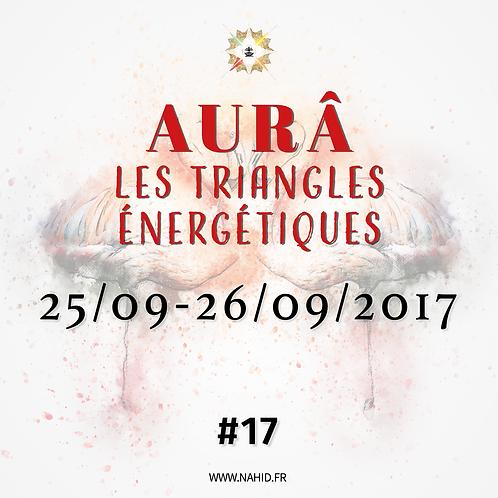 #17 Les Triangles Énergétiques du 25 au 26/09/2017   Les Archives de l'AUR®