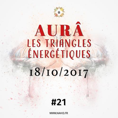 #21 Les Triangles Énergétiques du 18/10/2017 | Les Archives de l'AUR®