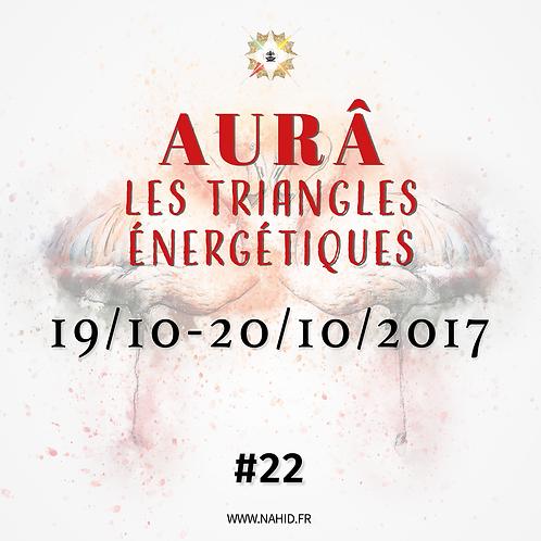 #22 Les Triangles Énergétiques du 19 au 20/10/2017   Les Archives de l'AUR®