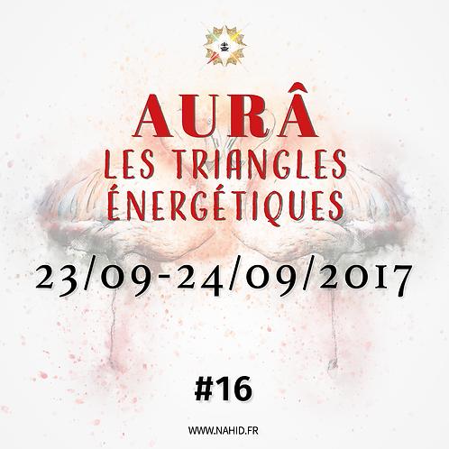 #16 Les Triangles Énergétiques du 23 au 24/09/2017   Les Archives de l'AUR®