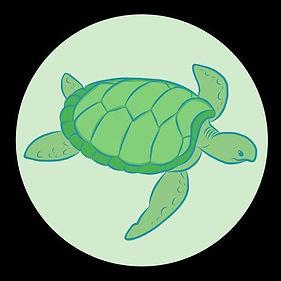 Turtlesthesave.jpg