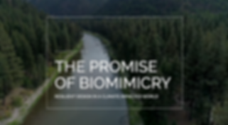 ThePromiseofBiomimicry.png