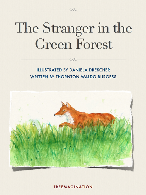 The Stranger in the Green Forest
