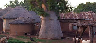 TMG_Ghana2.jpg