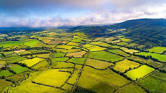 irishcountry.jpg