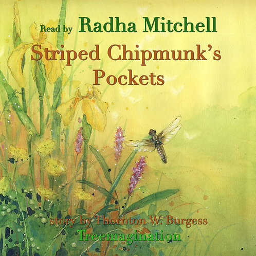 Radha Mitchell Reads Striped Chipmunks Pockets