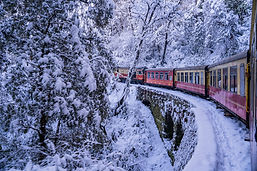 INDIA SHIMLA TRAIN iStock-1224392930.jpg