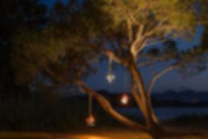 La-Lampe_Petite-3.jpg