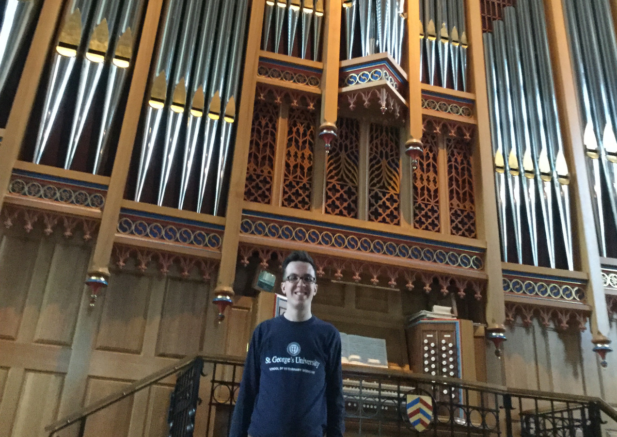 Standing by Merton College Dobson Organ