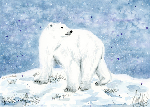 Winter Polar Bear