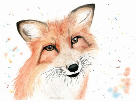 Fox Watercolour Portrait