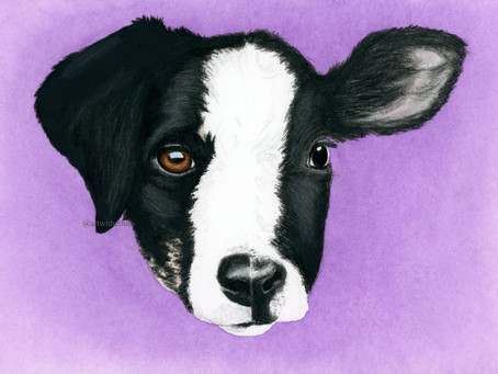 Why choose vegan art supplies? Introducing Art With Ethics!