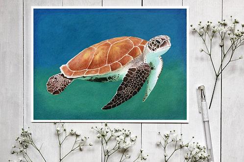 Turtle in watercolour & coloured pencil print. Vegan Wall Art, Vegan Home Decor