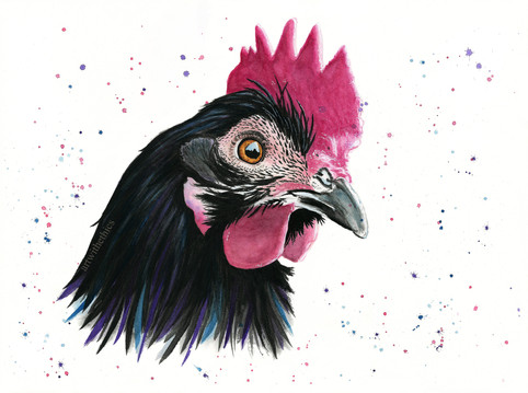 Chicken Watercolour Portrait